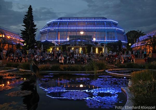 Romantische Stimmung bei der Botanischen Nacht