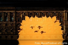 Fliegende Gänse in Berlin - beim Festival of Lights