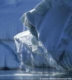 """Szenenbild aus """"Unsere Wildnis"""": Ein Eisberg bricht auseinander"""