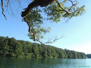 Feldberger Seenlandschaft, Schmaler Luzin