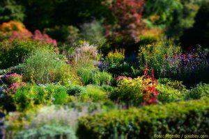 Karl-Foerster-Garten Potsdam