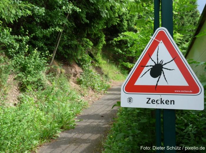 Warnung vor Zecken