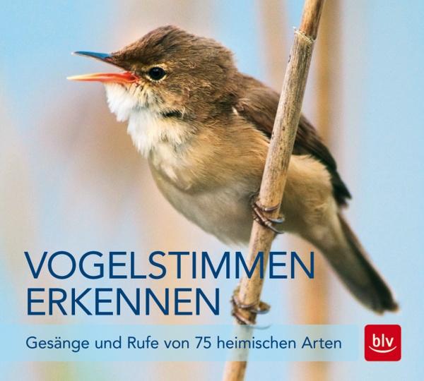 "CD-Cover ""Vogelstimmen erkennen"""
