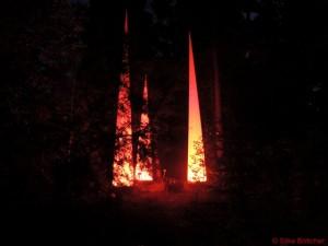 Lichtobjekt bei der Botanischen Nacht